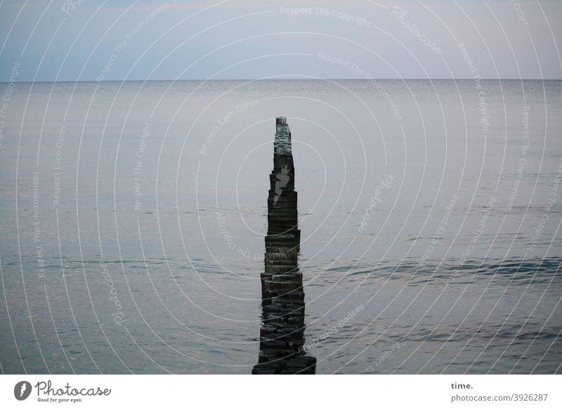 systemrelevant | Küstenschutz durch Buhnen buhne Wellenbrecher ostsee holz meer wasser himmel dämmerung horizont holzdamm dunkel holzpfahl welle oberfläche