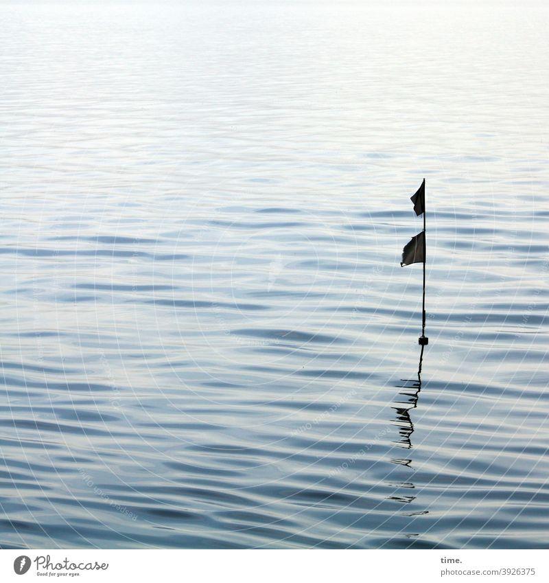 Ostseefähnchen orientierung spiegelung wellen meer wasser uneben oberfläche nass fahne merkmal sanft ostsee schwarz doppelt silhouette schatten gegenlicht