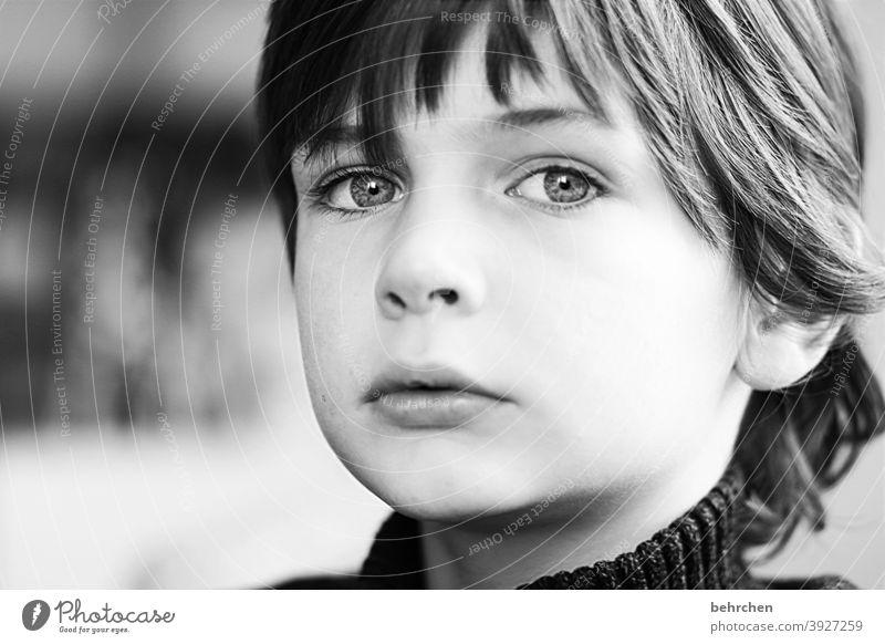 . Innenaufnahme frech Cool Coolness Familie Licht Tag Gesicht Kindheit Junge Nahaufnahme Kontrast Porträt Sonnenlicht Sohn Familie & Verwandtschaft