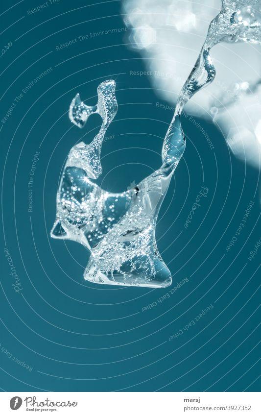 Eiskalte Skulptur. Der Künstler heißt Natur! Eiszapfen seltsam hängen außergewöhnlich Frost Winter elegant klein Vergänglichkeit Farbfoto gefroren Nahaufnahme