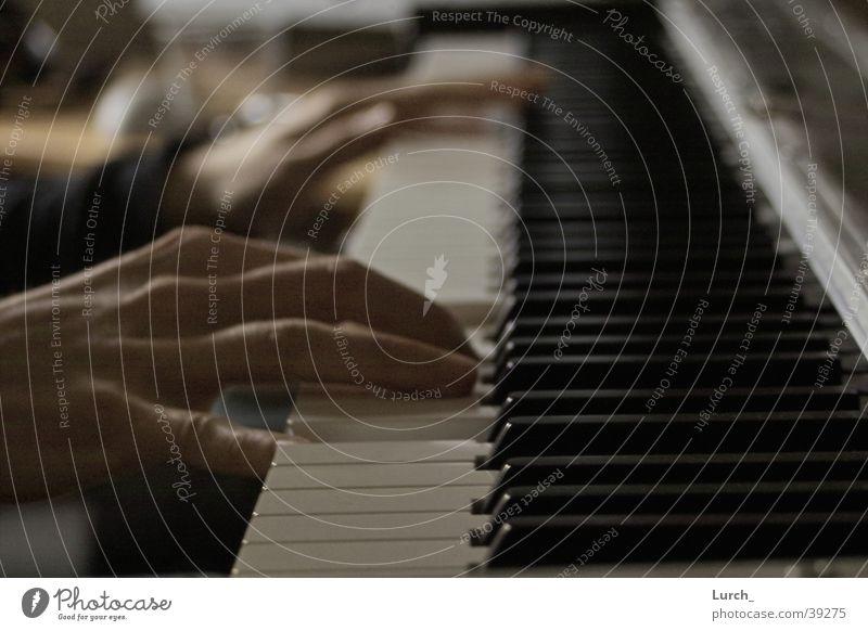 Pianist Mann Hand Flügel berühren Klavier