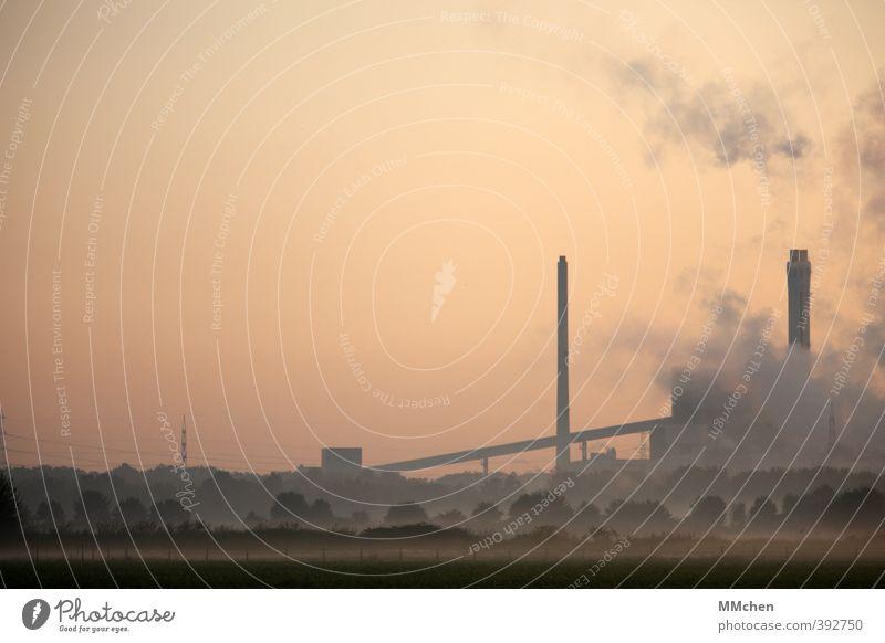 Industrie Natur Baum Landschaft Feld Nebel Energiewirtschaft Wachstum Zukunft Wandel & Veränderung Rauchen Wolkenloser Himmel Schornstein Klimawandel