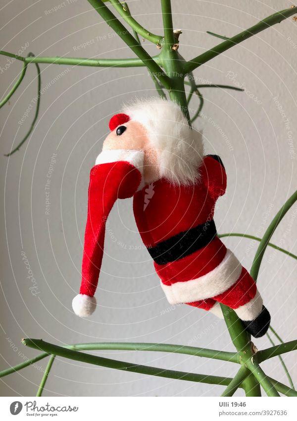 Weihnachtsmann auf dem Weg in den Ruhestand . . . . . . Weihnachtsfest Klettergerüst Weihnachtsbaum komisch abwärts winterschlaf rot/weiß komische pflanze