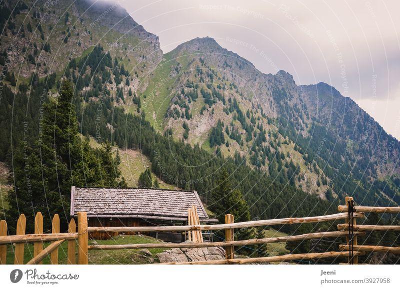 Wandern in den Alpen | Ausblick von der Alm auf den Aufstieg | wolkenverhangen und nebelig da oben Wiese hoch oben Gebirge Berge u. Gebirge bergig Bergwiese Tal