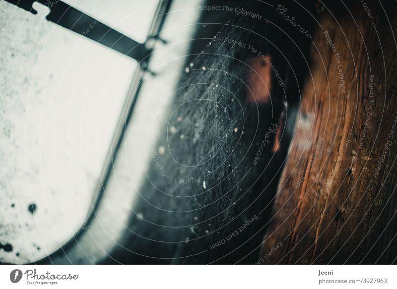 Ein wenig Licht kommt durch die Dachluke und bescheint das dichte Geflecht der Spinnenwebe Dachboden Lichtschacht Dachfenster alt Fenster Balken Holzbalken Haus