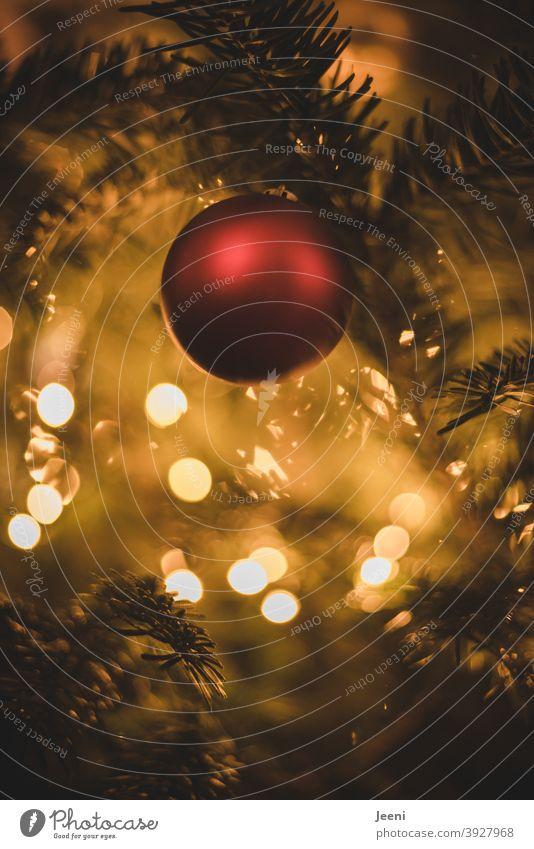 Rote Weihnachtskugel am Tannenbaum | Im Hintergrund die verschwommenen Lichter des Weihnachtsbaumes Weihnachten Advent Weihnachtskugeln Weihnachten & Advent