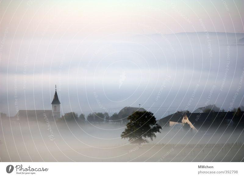 Morgen Ferien & Urlaub & Reisen schön Wasser Baum Haus Wiese Tod Traurigkeit Architektur Gebäude Stimmung Luft Wohnung Feld Idylle Nebel