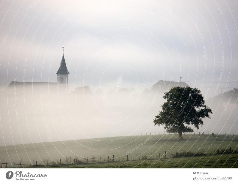 FrühSchicht Natur Ferien & Urlaub & Reisen grün schön Baum Landschaft ruhig Haus Herbst Religion & Glaube träumen Feld Nebel Tourismus wandern Kirche