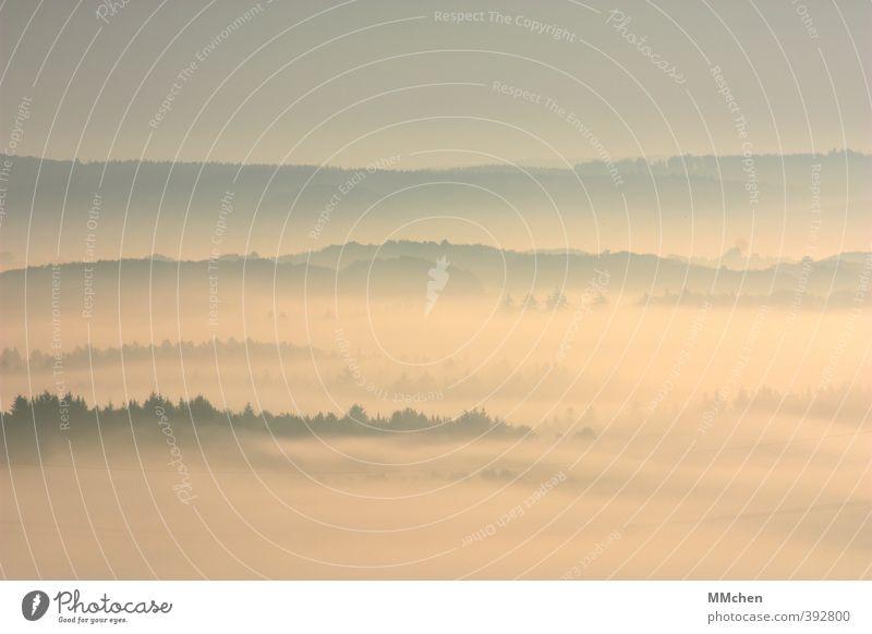 UnSichtbar Ferien & Urlaub & Reisen blau Erholung ruhig Wald Berge u. Gebirge Wiese Herbst träumen Stimmung rosa Feld Idylle Nebel Tourismus Ausflug