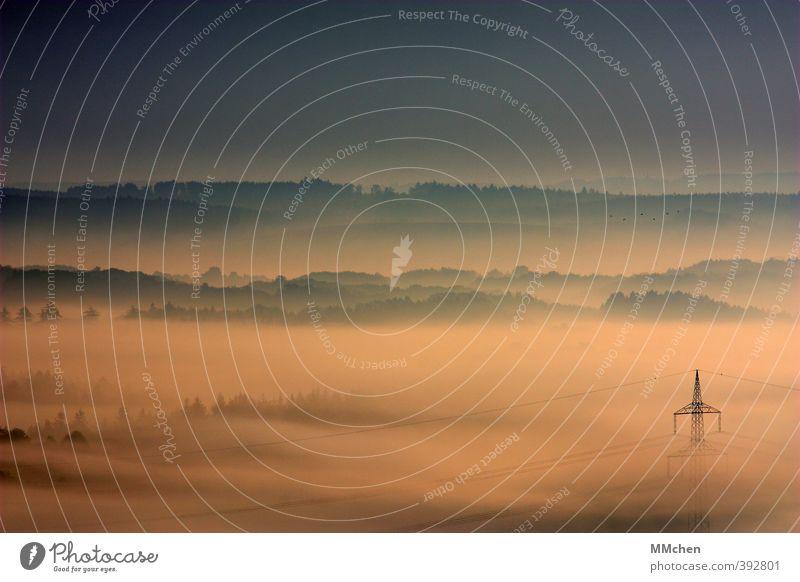 UeberSicht Himmel Baum Landschaft Herbst Frühling Horizont Wetter Nebel Tourismus Sträucher Aussicht Unendlichkeit entdecken verstecken Strommast Eifel