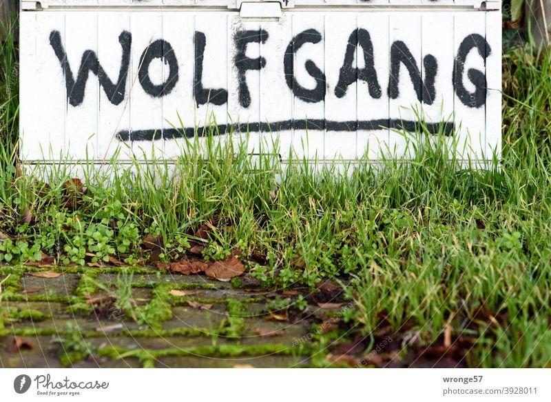 Vornamen | Entdeckung Thementag Wolfgang Menschenleer Farbfoto Außenaufnahme Tag Nahaufnahme Schriftzeichen Verteiler Verteilerkasten Graffito Graffiti
