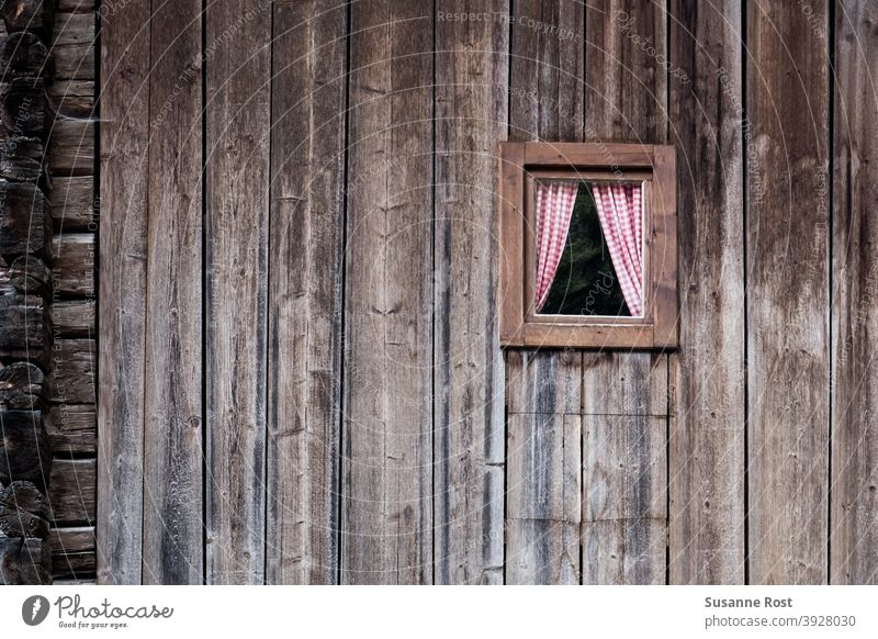 Eine Hauswand aus breiten Holzbalken mit einem kleinen Holzfenster mit rot-weiß karierten Gardinen an Fenster Fassade Holzfassade alt Wand Detailaufnahme