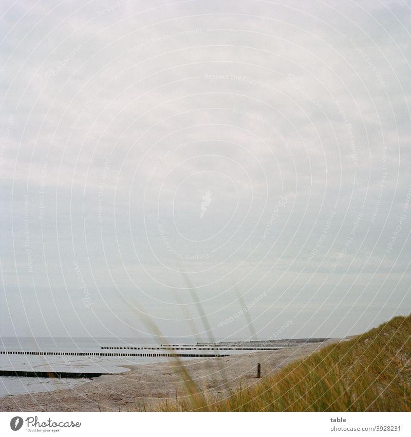 Ostseestrand im November Ferien & Urlaub & Reisen Meer Tourismus Mecklenburg-Vorpommern Windstille genießen Hintergrund neutral Gesundheit Wellness Leben