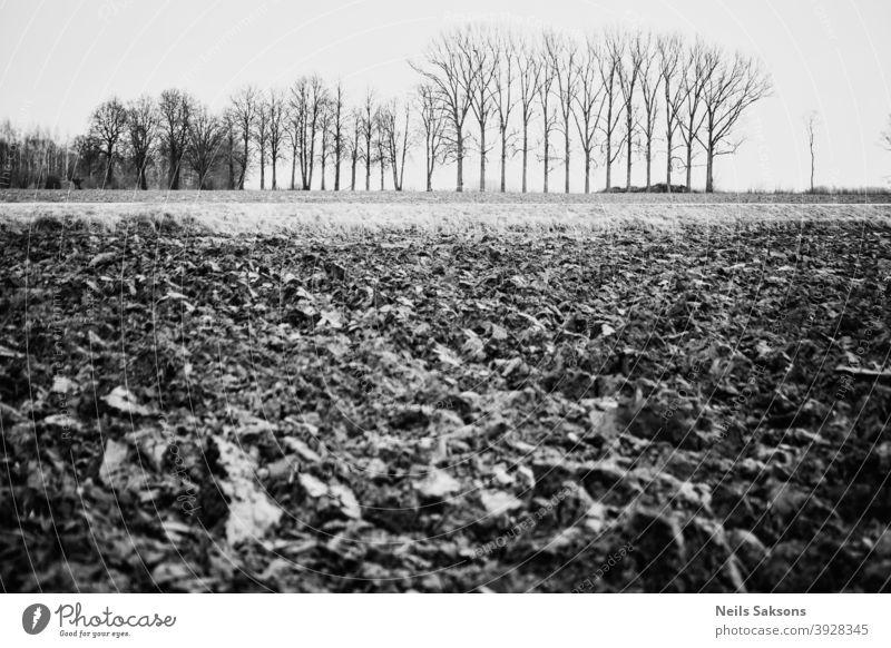Gepflügt landwirtschaftlichen Bauernhof Feld Muster mit kahlen Bäumen im Hintergrund Boden Erde Himmel Ackerland Land Schmutz Ackerbau Agronomie Asien Herbst