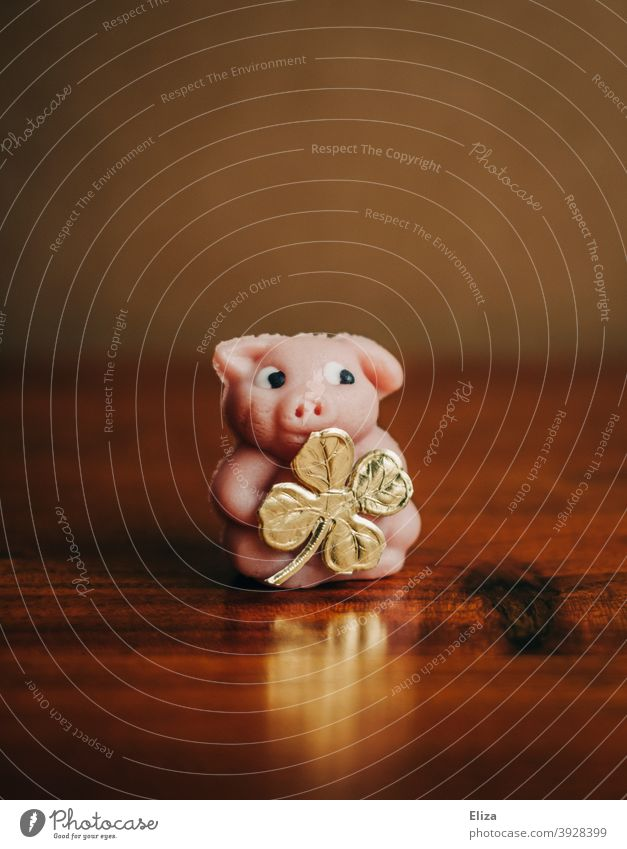 Glücksschwein mit goldenem vierblättrigem Kleeblatt als Glücksbringer zu Silvester. Schwein Symbol vierblättriges Kleeblatt Neujahr neues Jahr