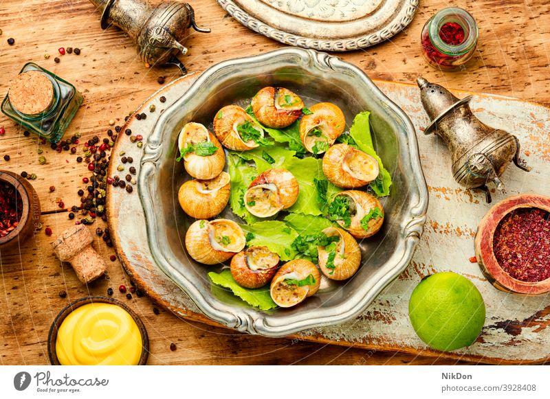 Bourgogne-Schnecken Riesenglanzschnecke Panzer Lebensmittel burgundische Schnecken Weichtier Mollusken Französische Schnecken Schneckenfutter gefüllte Schnecken