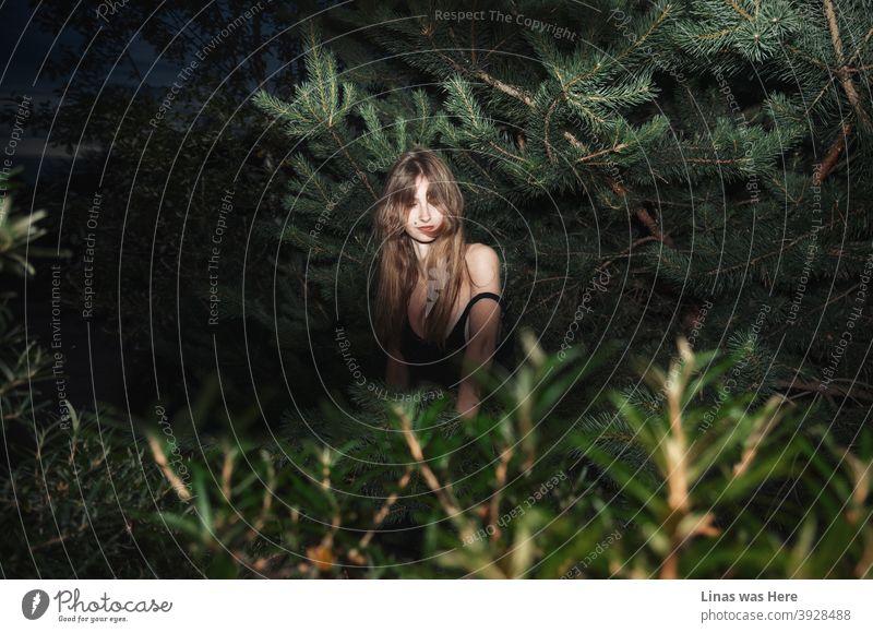 Ein wunderschönes brünettes Mädchen versteckt sich in diesen dunklen Büschen. Es scheint, dass diese hübsche Frau von einem Stalker verfolgt wird, der eine Taschenlampe benutzt und die Schönheit dieses weiblichen Models entlarvt.