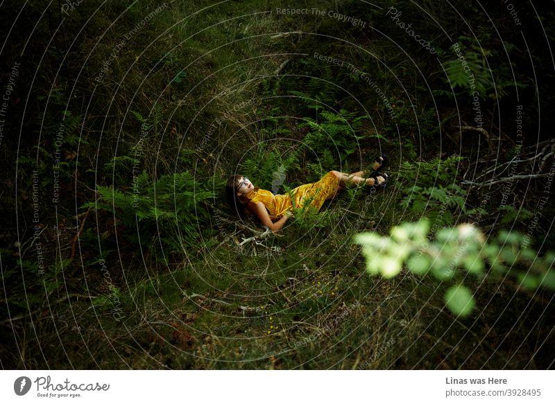 Verlorenes Mädchen mit einem goldgelben Kleid im Wald liegt bequem auf dem Boden. Grüne Farne, grünes Gras, grüne Blätter und grüne Natur, im Allgemeinen, umgibt diese junge und schöne Frau.
