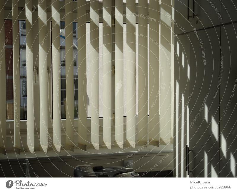 Blick aus dem Fenster mit Sichtschutz Gardinen Haus Vorhang Fensterscheibe Innenaufnahme Häusliches Leben Fensterbrett Dekoration & Verzierung Wohnung
