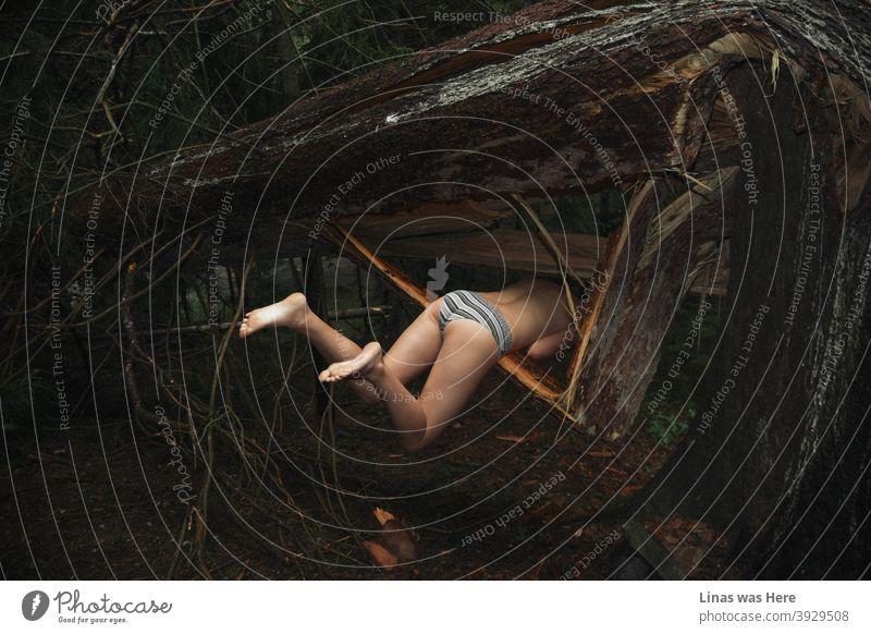Ein Unfall in diesem dunklen Wald, wo ein Mädchen von einem toten Baum gefangen wird. Moody Atmosphäre und sexy zurück in das Bild. Diese gespenstischen Wälder befinden sich in Borjomi, Georgien.