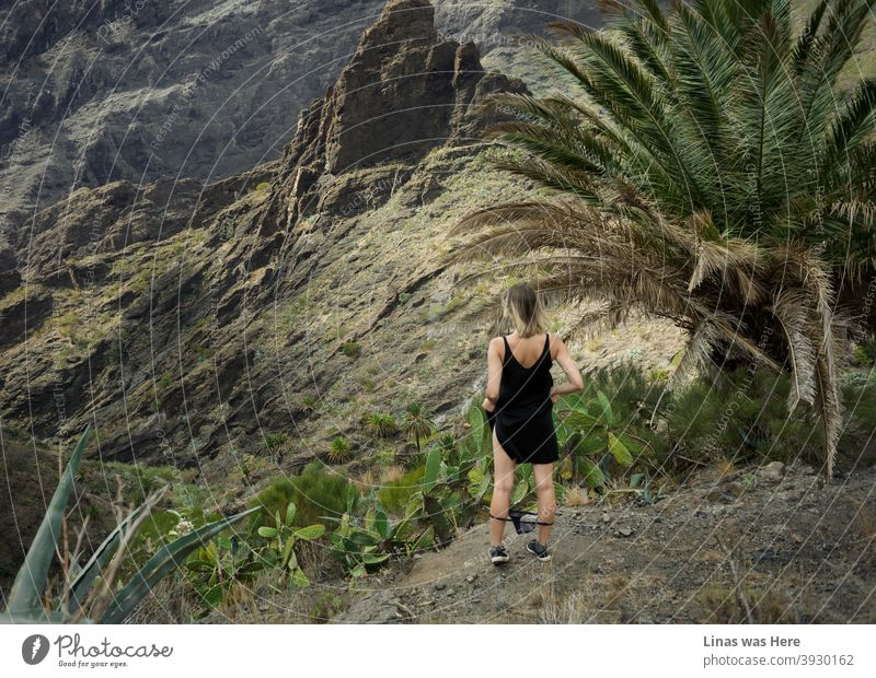 Verlorenes Mädchen in diesen Bergen, die aussehen (und tatsächlich sind) wie Masca auf Teneriffa. Massive Felsen, grüne Palmenblätter, stachelige Kakteen, oh, und schwarze Höschen. Wildes Mädchen in diesem wilden Terrain.