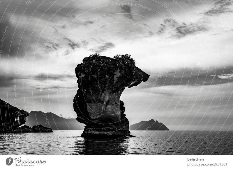 unerschütterlich Schwarzweißfoto Wellen Berge u. Gebirge Umwelt Ausflug Abenteuer Ferne Freiheit Natur Ferien & Urlaub & Reisen Tourismus Landschaft Meer Strand