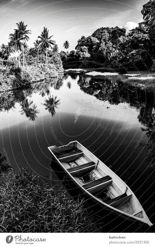 stille traumhaft Abend Dämmerung Sonnenuntergang Menschenleer Ausflug Tourismus Ferien & Urlaub & Reisen Boot Ruderboot Abenteuer Ferne Freiheit Natur