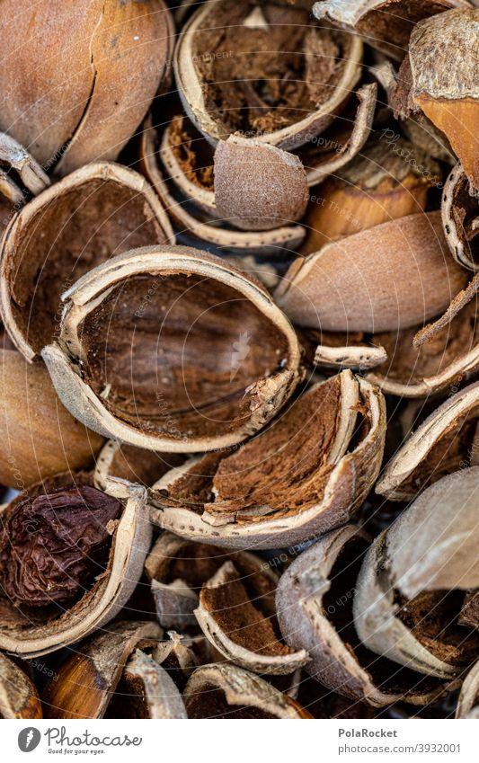 #S# Nussschalen Haselnuss Haselnüsse haselnussbraun Schale Abfall Weihnachten & Advent viele Lebensmittel Nahaufnahme Menschenleer Vegetarische Ernährung
