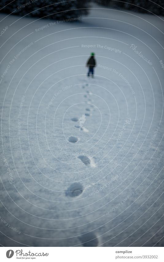 Spuren im Schnee Fährte verfolgen Winter Pulverschnee weiß laufen wandern Outdoor Wald kalt Fußspur verlaufen Verfolgung düster Schwäbische Alb