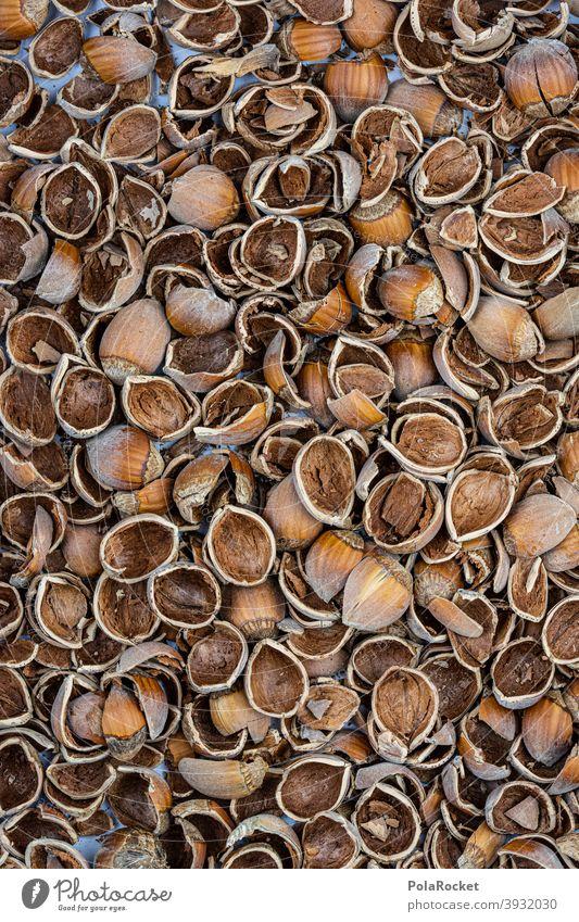 #S# Nussschalen II Haselnuss Haselnüsse haselnussbraun Schale Abfall Weihnachten & Advent viele Lebensmittel Nahaufnahme Menschenleer Vegetarische Ernährung