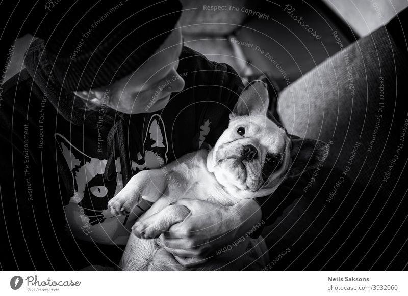 Französische Bulldogge Welpe in seinem besten Freund Hände Tier Baby Hintergrund schön schwarz züchten Eckzahn Pflege Kind niedlich Hund Hündchen heimisch