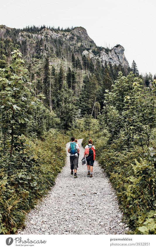 Familie mit Rucksäcken Wandern in einem Gebirge aktiv verbringen Sommerurlaub zusammen Aktivität Abenteuer Wald Waldlandschaft Schneise Freiheit Spaß Gesundheit