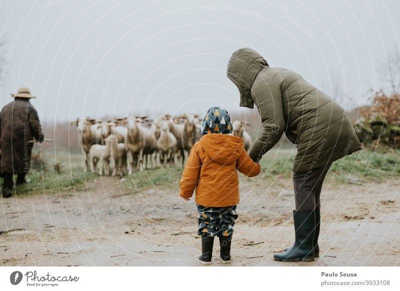 Mutter und Tochter beobachten Schafe Mutterschaft Kind reisen authentisch Winter Zusammensein Familie & Verwandtschaft Liebe Glück Lifestyle Kaukasier Frau