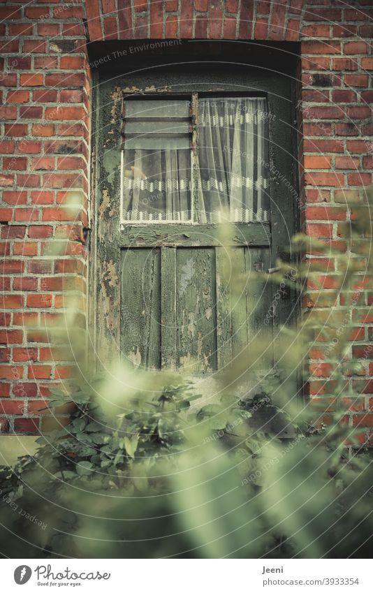 Schöner Wohnen im Grünen Traumhaus Immobilie Immobilienmarkt schön wohnen im grünen Wohnung wohneigentum schöner wohnen Haus Häusliches Leben Fenster Miete