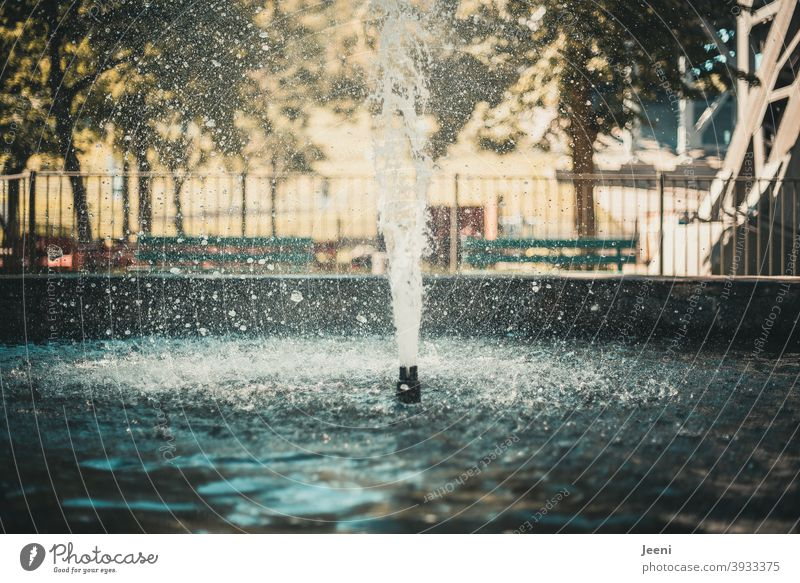 Das Wasser spritzt in einer Fontäne nach oben | Springbrunnen im Sommer Brunnen nass Wassertropfen Wasseroberfläche Wasserspiegelung Wasserspiele spritzen