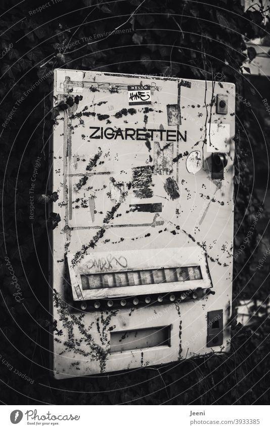Uralter Zigarettenautomat hängt an einer mit Efeu bewachsenen Wand nostalgisch damals früher Vergangenheit Vergänglichkeit Erinnerung Nostalgie Rauchen