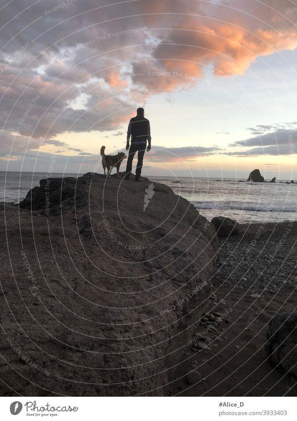 Mann und Hund stehen auf Felsen und schauen auf das Meer  bei Sonnenuntergang spain andalusia almeria nijar natural park cabo de gata dusk sunlight shining