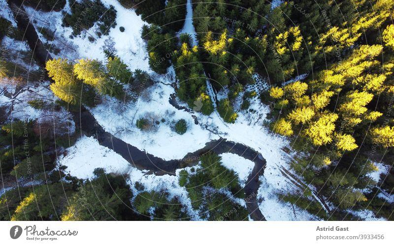 Drohnenfoto von einem Wald mit Bach im Winter mit Licht und Schatten drohnenfoto luftaufnahme wald bach bachlauf bäume landschaft winter schnee sonne licht