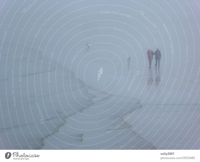 undurchsichtiger Strandspaziergang mit Hunden... Nebel Spaziergang spazierengehen Paar 2 Herbst neblig Winter Brandung Ufer Küste Meer einhaken einhängen Mensch
