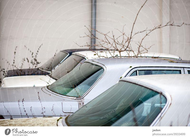 stellplatz. Auto Autofenster karroserie PKW Fahrzeug Menschenleer Schrott alt Verkehrsmittel Detailaufnahme retro kaputt Oldtimer Autowrack schrottreif Verfall