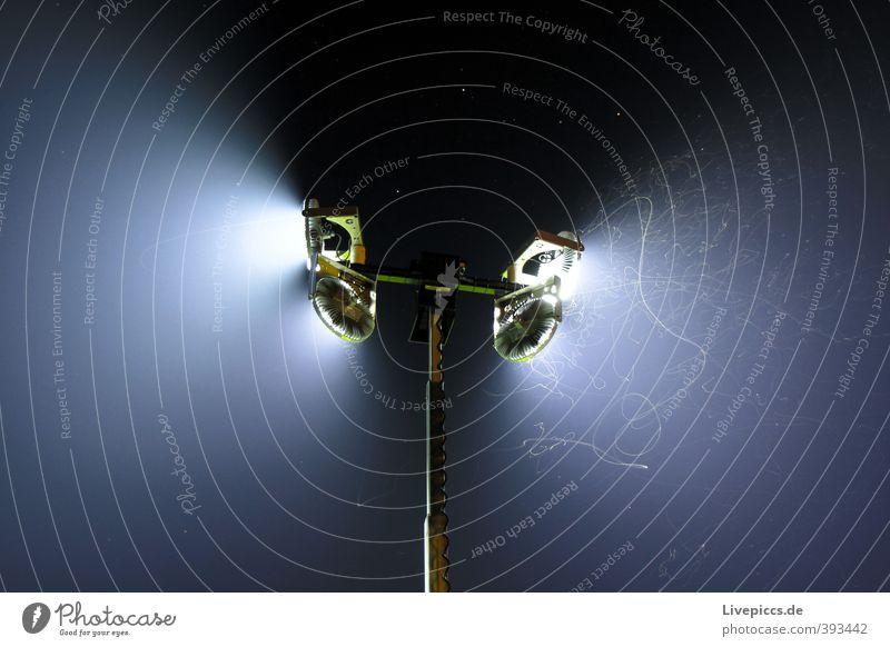 Mückentanz Nachtleben Veranstaltung Kabel Wildtier Stechmücke Insekt Schwarm Stahl fliegen leuchten klein wild blau schwarz Lampe Scheinwerfer Farbfoto