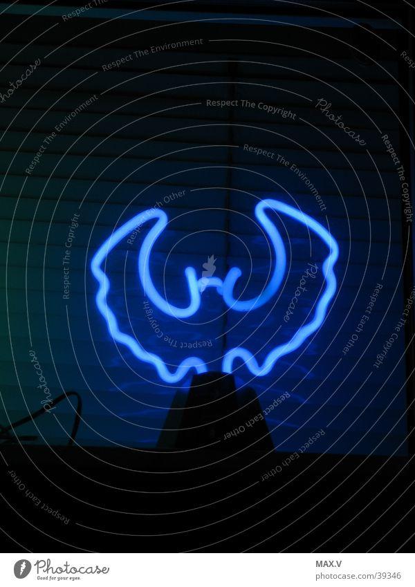 Nachtmaus blau schwarz Neonlicht Fledermäuse