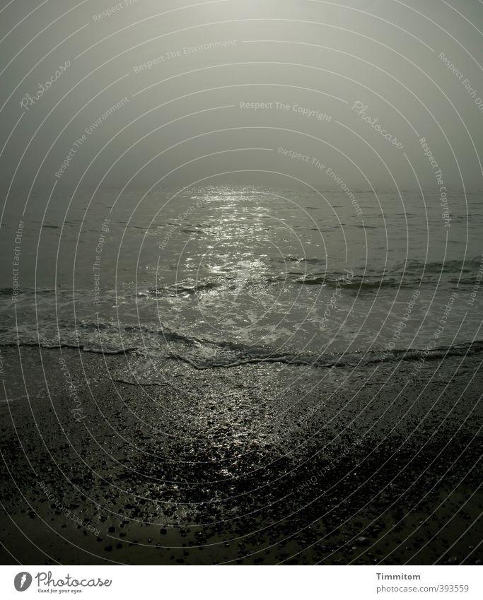 Glänzend. Ferien & Urlaub & Reisen Umwelt Natur Wasser Himmel Wolken Sonnenlicht schlechtes Wetter Dänemark ästhetisch dunkel natürlich grau schwarz Gefühle
