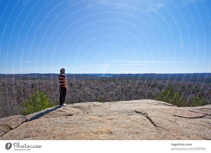 ALGONQUIN NATIONAL PARK, CA Natur Mann Ferien & Urlaub & Reisen Landschaft Wald Ferne Reisefotografie Felsen Horizont Idylle Unendlichkeit Paradies himmlisch