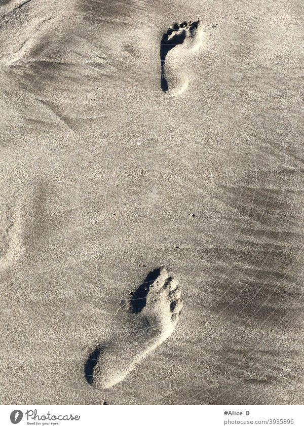Barfußabdrücke im Sand tourism barefoot travel footprints in the sand beach person coastline wet mediterranean seashore lonely freedom alone human footstep