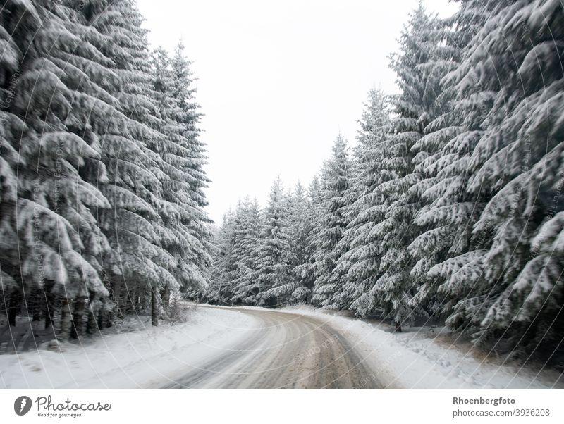 glatte schneebedeckte Straße in einem Waldgebiet straße wald tannen nadelbäume winter landschaft natur winterdienst räumen schieben salz gefahr gefährlich