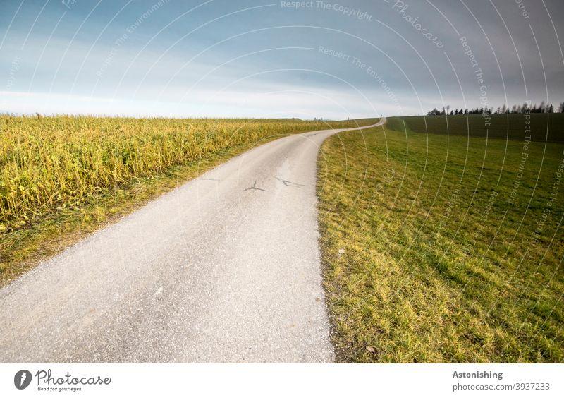 Straße auf den Hügel Weg Pfad Landschaft Gras Rasen grau Asphalt Feld Natur Landwirtschaft Himmel Horizont blau Linie hinauf Weite grün Wiese Baum Wolken