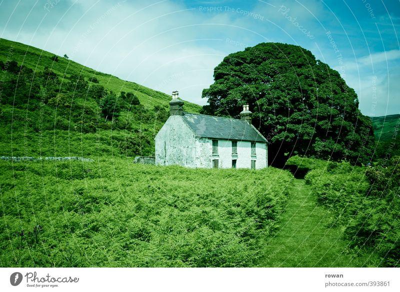 irish cottage 4 Umwelt Natur Landschaft Baum Sträucher Park Wiese Feld Wald Hügel Haus Einfamilienhaus Hütte Bauwerk Gebäude Architektur alt Republik Irland