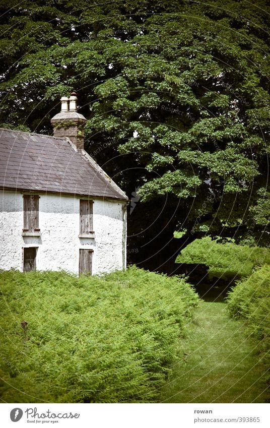irish cottage 2 Umwelt Natur Landschaft Baum Gras Sträucher Garten Park Wiese Feld Dorf Haus Einfamilienhaus Bauwerk Gebäude Architektur Häusliches Leben