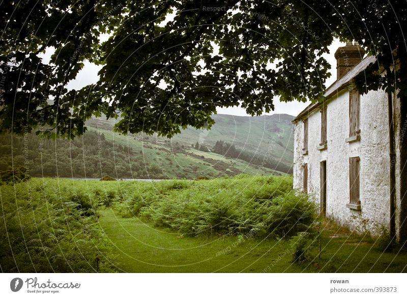 irish cottage Umwelt Natur Landschaft Baum Gras Sträucher Moos Garten Park Wiese Feld Hügel Berge u. Gebirge Haus Einfamilienhaus Hütte Bauwerk Gebäude
